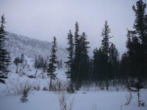 Борус зимой